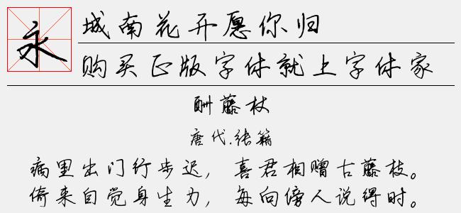 城南花开(免费下载,商业用途请自行购买版权)