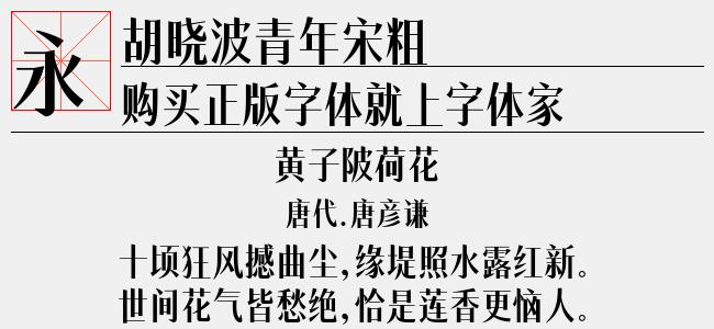 胡晓波青年宋粗(3.18 M)效果图