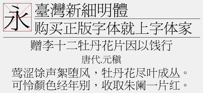 臺灣新細明體(Regular)预览图